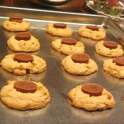 Check out this scrumptuous cooking,  recipe to make Butter Cup Cookies