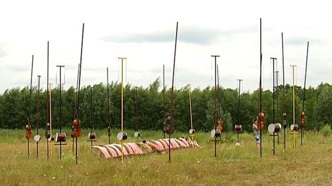 Harmonic Fields, een kunstproject van de Fransman Pierre Sauvageot.