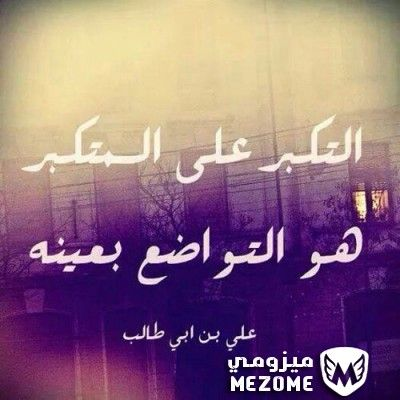 التكبر على المتكبر هو التواضع بعينه اقوال العظماء Ali Quotes Funny Arabic Quotes Arabic Quotes