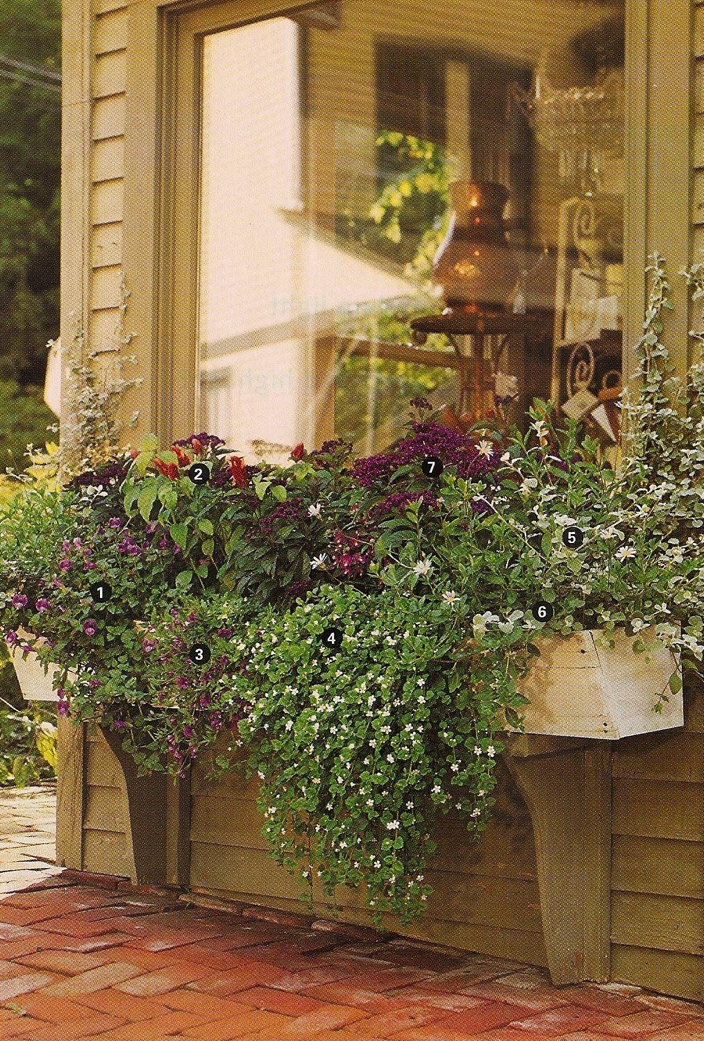design dump | In the Garden | Pinterest | Gardens