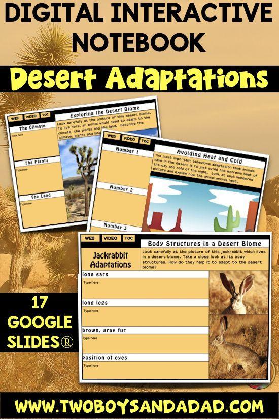 Desert Animal Adaptations Interactive Digital Notebook for