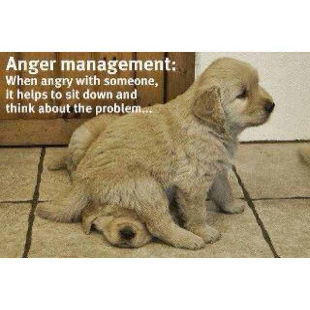 Anger Management When Angry With Someone It Helps To Sit Down And Think About The Problem