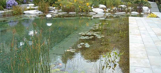 Pond Design Dorset Natural Swimming Pools Floating Fountains Eco Pools Pond Landscaping Pinterest Pic Picks By Retoxmaga Natural Pools Ponds In 2019