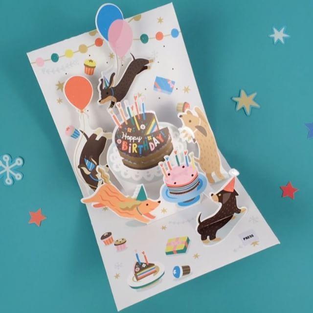 Who Doesn T Love Some Birthday Dachshunds Prancing Amongst Rainbow Lights Dachshund Cards Rainbow Light