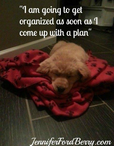 Sleepy Puppy..www.jenniferfordberry.com