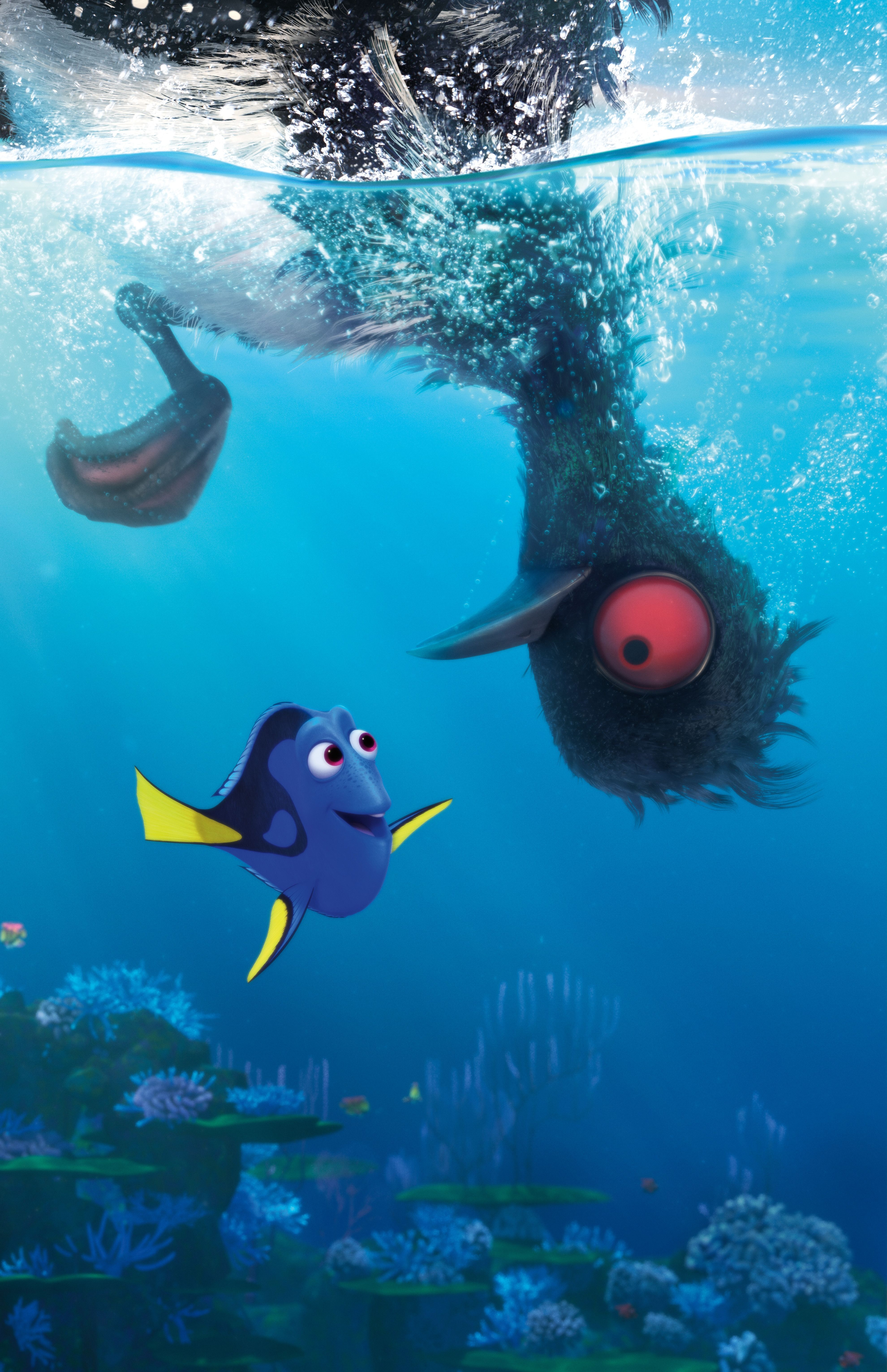Finding Dory Gallery Finding Dory Bear Coloring Pages Dory