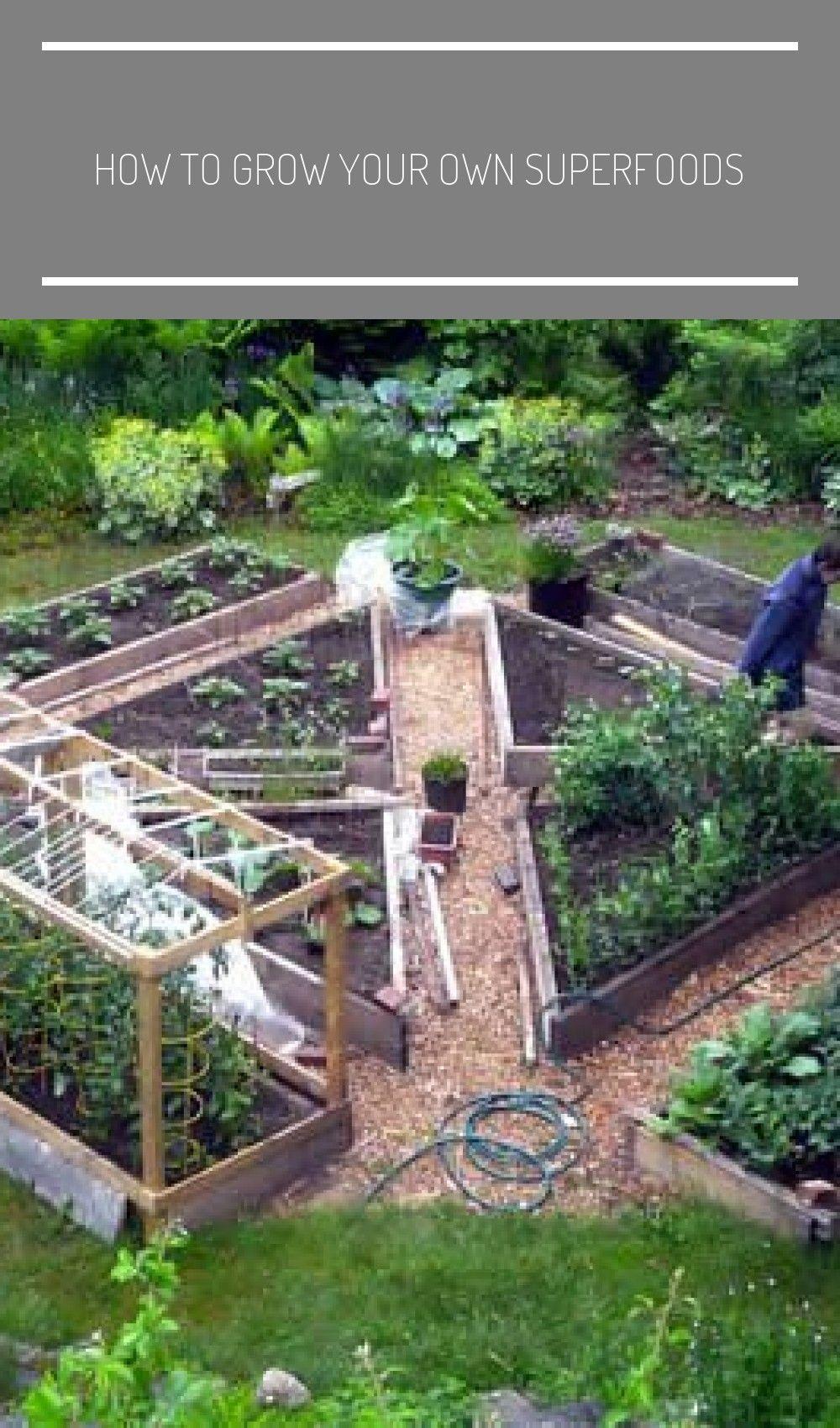 Garten Die Schonsten Gemusegarten Layout Garden Plan How To Grow Your Own Superfoods Garden Terrarium Garden Design Kitchen Garden Backyard garden grow your own