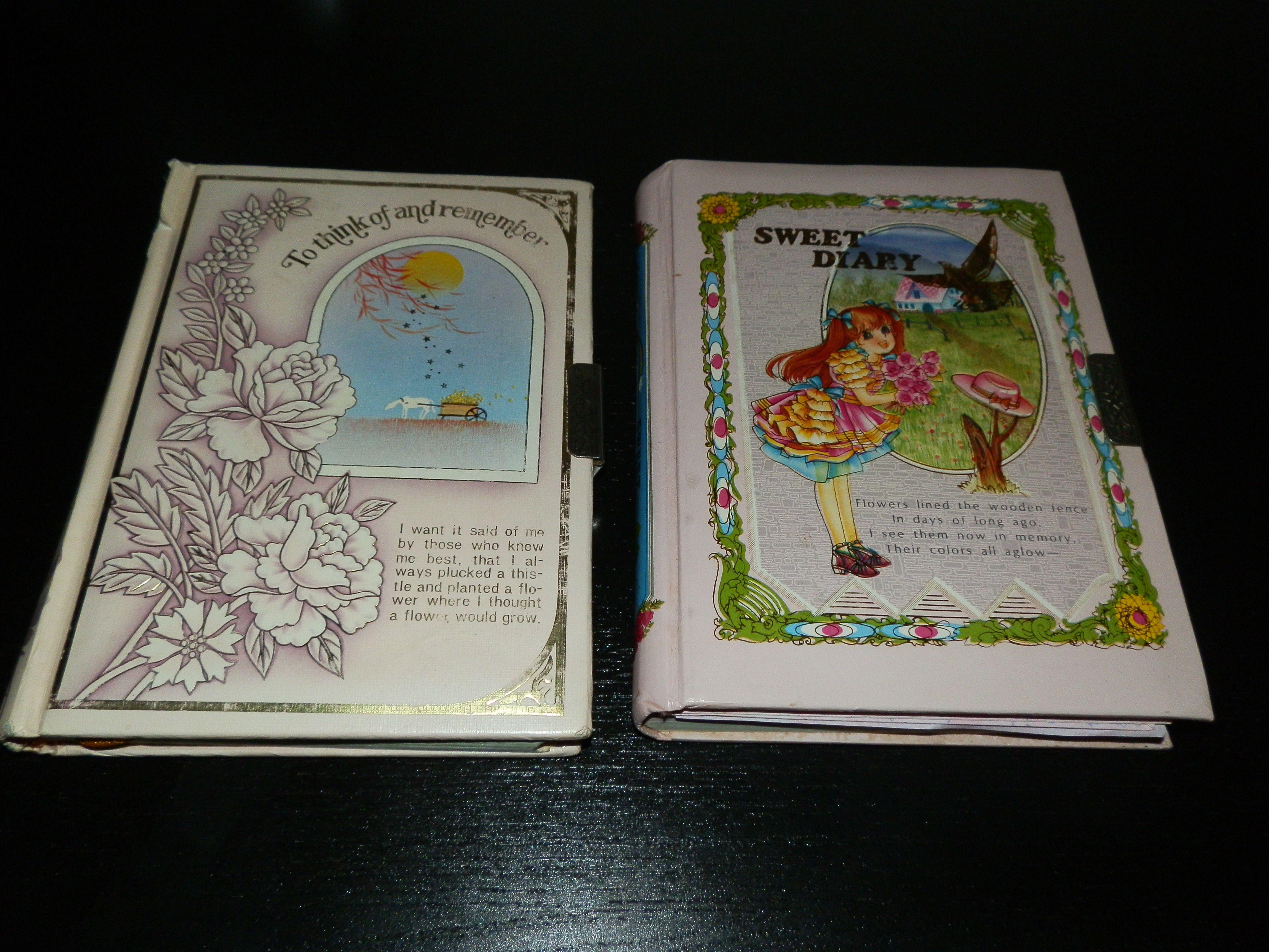 mis diarios de cuando era chiquita