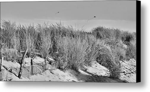 Kites over dunes jersey shore canvas print canvas art by angie tirado mckenzie
