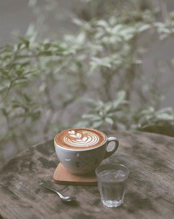Coffee Shop Melrose Long Coffee Bean Menu Solaire Before Coffee Bean And Tea Leaf Employment On Coffee Bean Near Me Ho Coffee Latte Art Cappuccino Coffee Latte