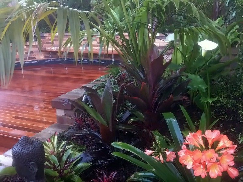 Balinese Garden Design Rozelle Inner West Sydney Landscapers Sydney Balinese Garden Tropical Garden Design Small Tropical Gardens