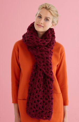 Free Crochet Pattern L20133 Easy V Stitch Scarf Lion Brand Yarn