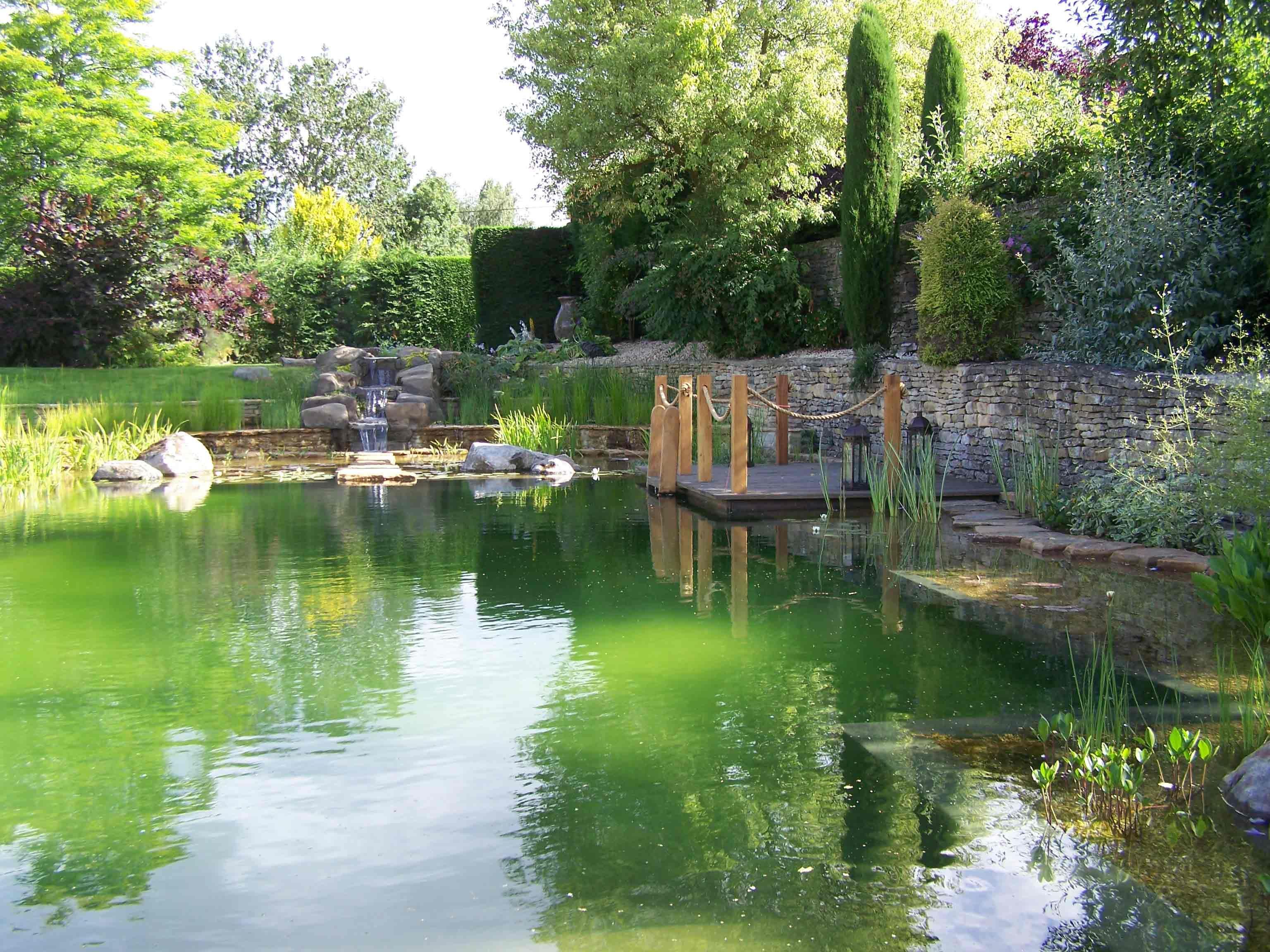 Natural pools buscar con google piscinas naturales for Natural garden pond design
