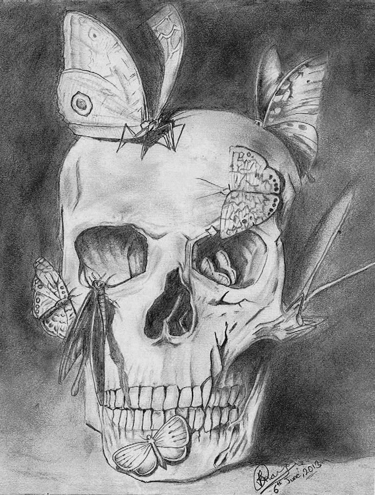 bugs on skull - Sketching by Aakash Bikram Rana at touchtalent ...