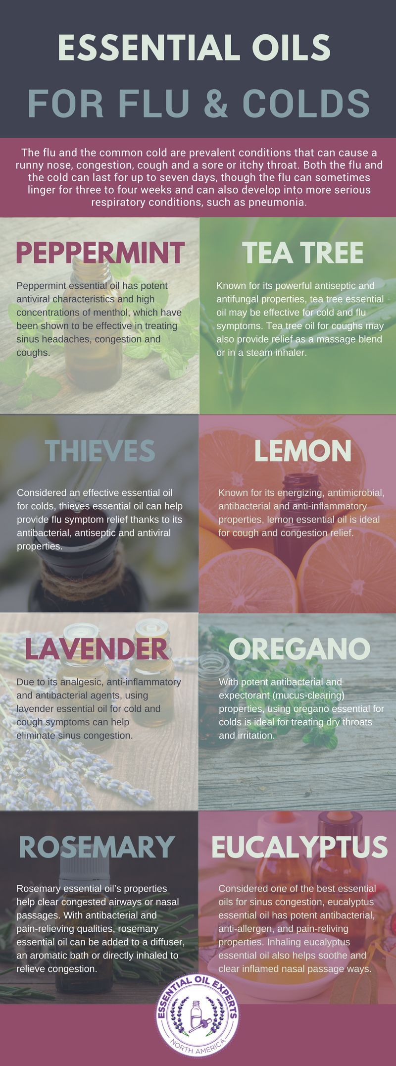 Pin On Healing With Essential Oils