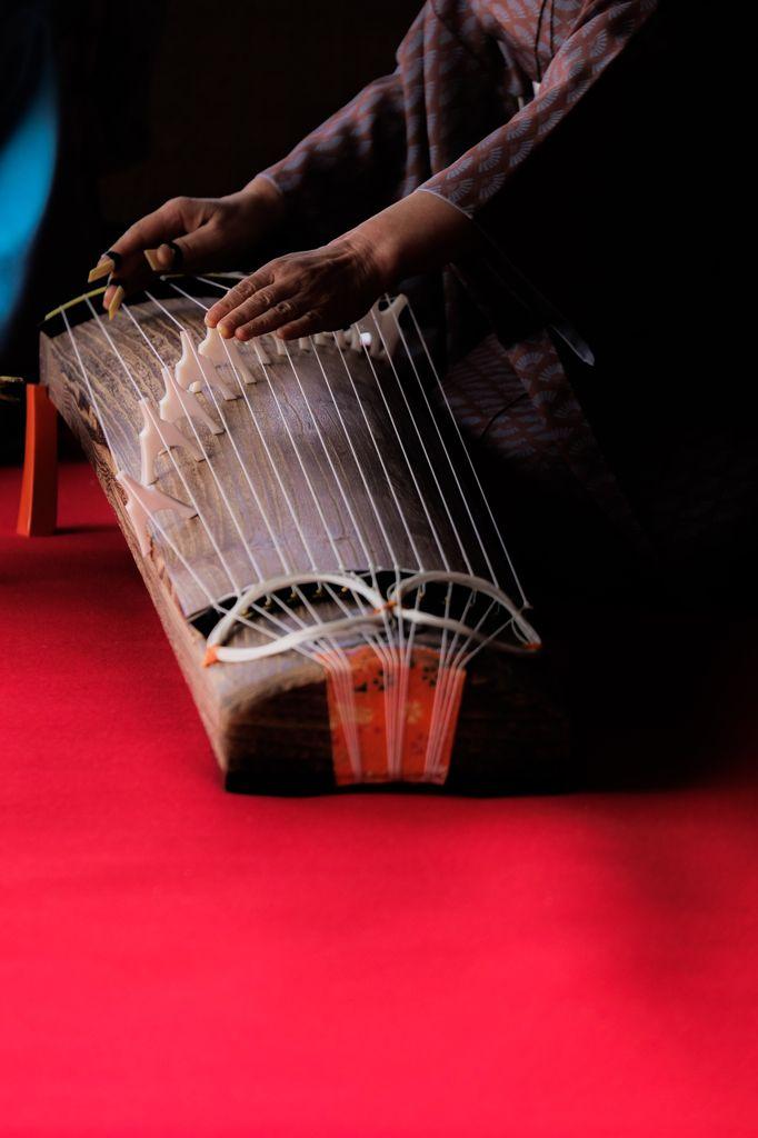 Instrumentos de música de maestros chinos follar