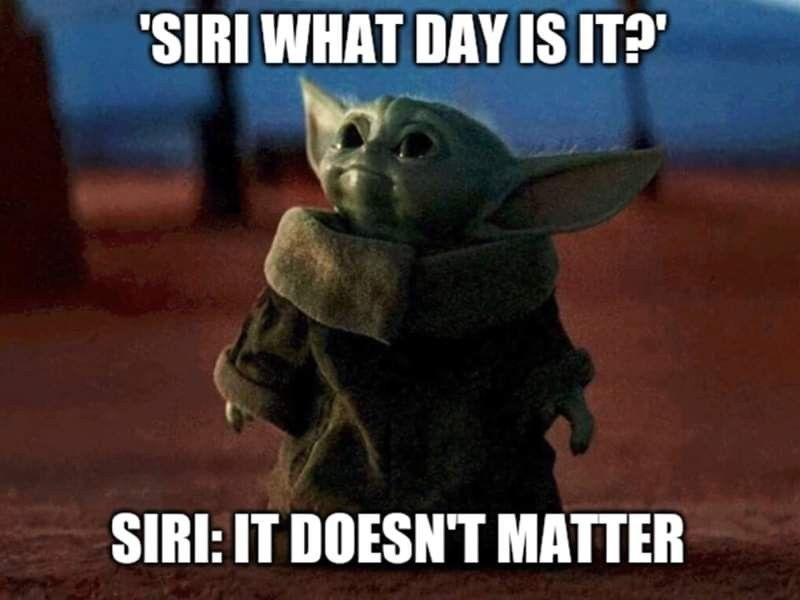 What Day Is It It Doesn T Matter Yoda Funny Yoda Meme Funny Gif