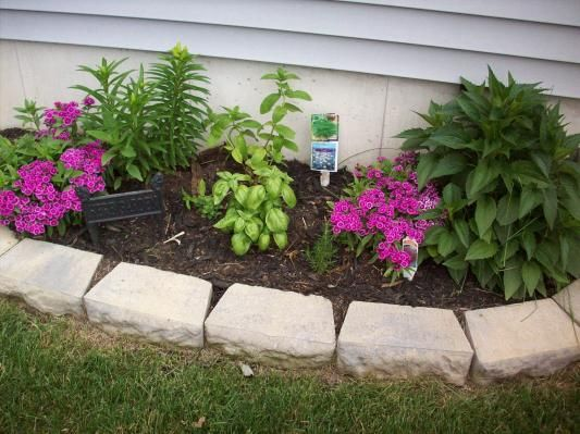Scotts Nature Scapes Advanced Classic Black Mulch Scotts Black Mulch Mulch Rock Garden