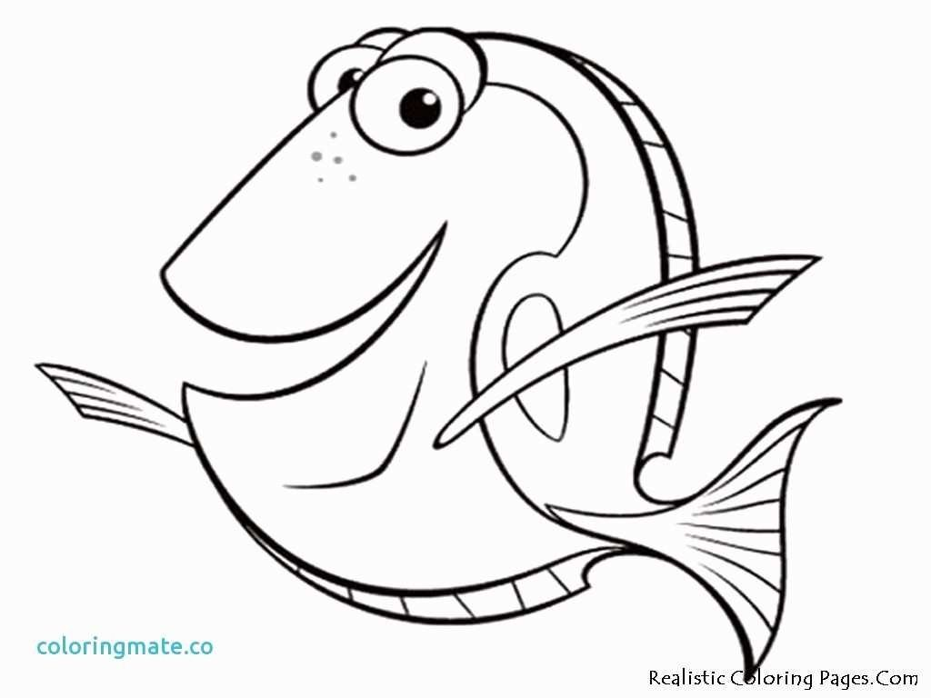 22 Inspired Photo Of Finding Dory Coloring Pages Nemo Coloring