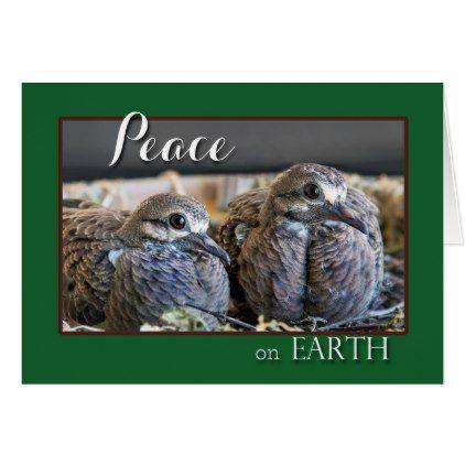 Dove Christmas Card Wishing Peace - Xmas ChristmasEve Christmas Eve