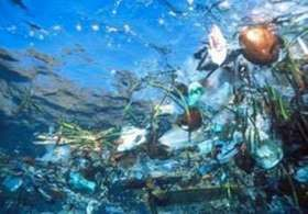La basura en los océanos es 100 veces mayor que hace 40 años
