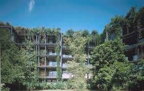 Image result for kandalama hotel architecture