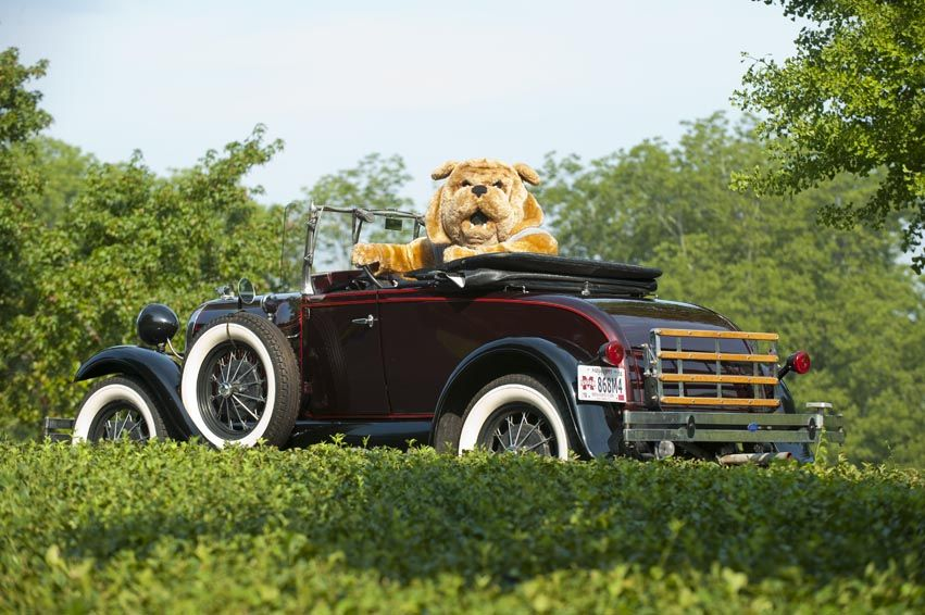 GO MS STATE! Car Tag!   Hail State.. Love my Bulldogs!!!   Pinterest