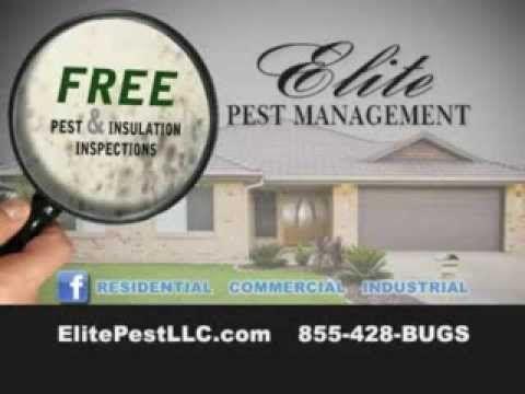 Pest Control Marietta Oh Elite Pest Management Https Www Youtube Com Watch V Rkrsveo109c Pest Control Cool Websites Parkersburg