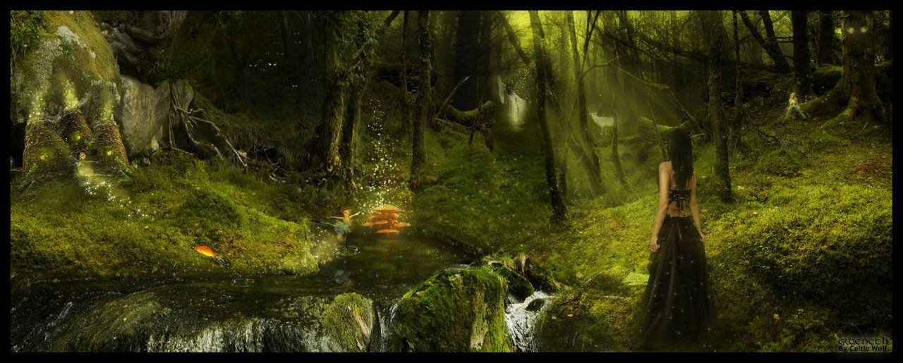Forest of Gweneth by CelticW0lf on DeviantArt