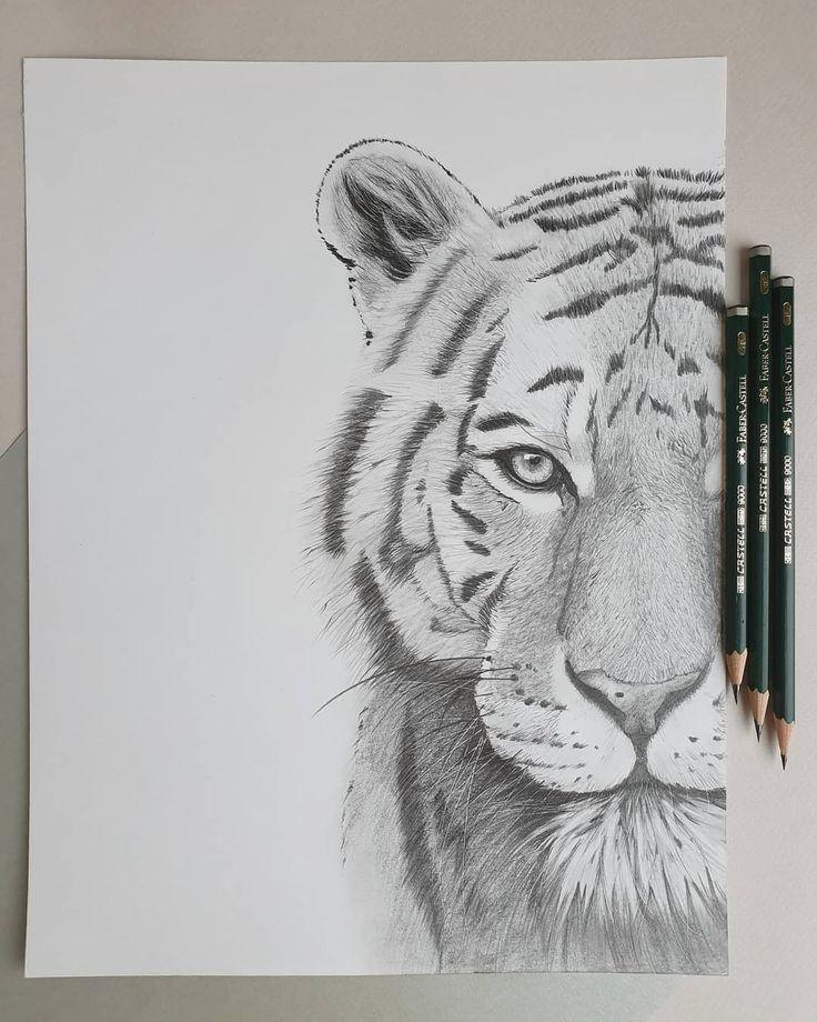 Abbildung Tiger Bleistift
