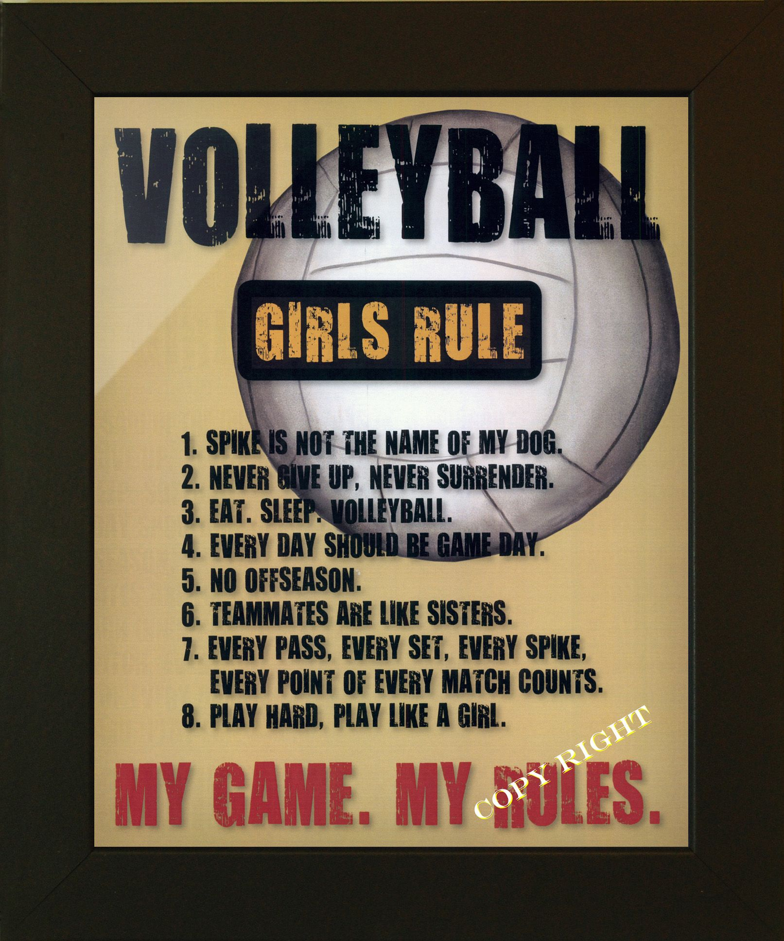 Pin By Kylee On Volleyball Volleyball Rules Volleyball Memes Volleyball