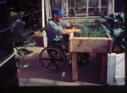 Article all about gardening from a wheelchair and horticultural