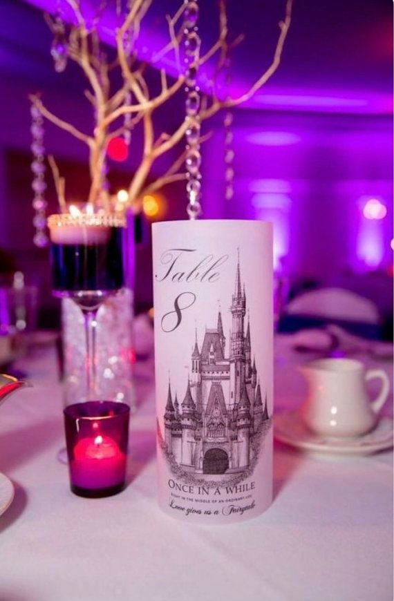 This Wedding Is Proof You Can Have A Gorgeous Elegant Disney Themed On Budget Photos By Capturing The Bliss Photography