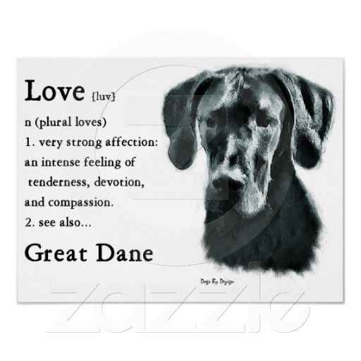 Great Dane Gifts Poster Zazzle Com Great Dane Facts Great