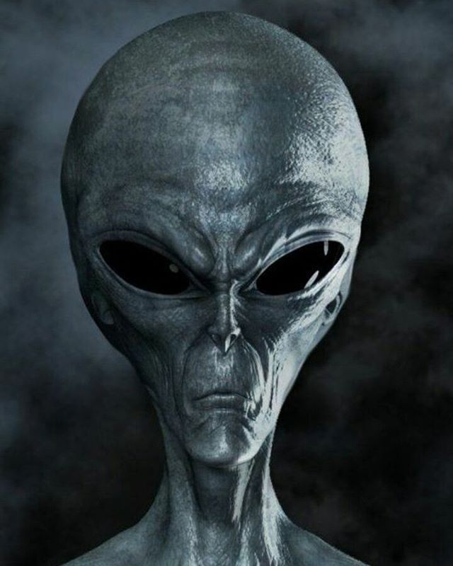 Image result for foto alien