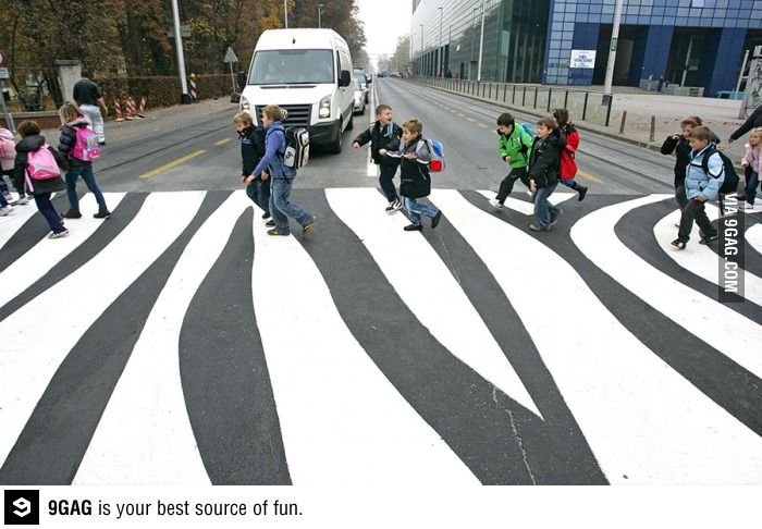 An Actual Zebra Crossing In Front Of A Zoo In Zagreb Croatia Streetscape Design Zebra Crossing Urban Art