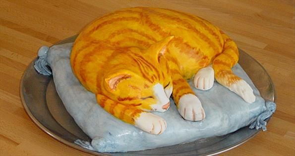 How To Make A Cat Shaped Birthday Cake Different Picture One