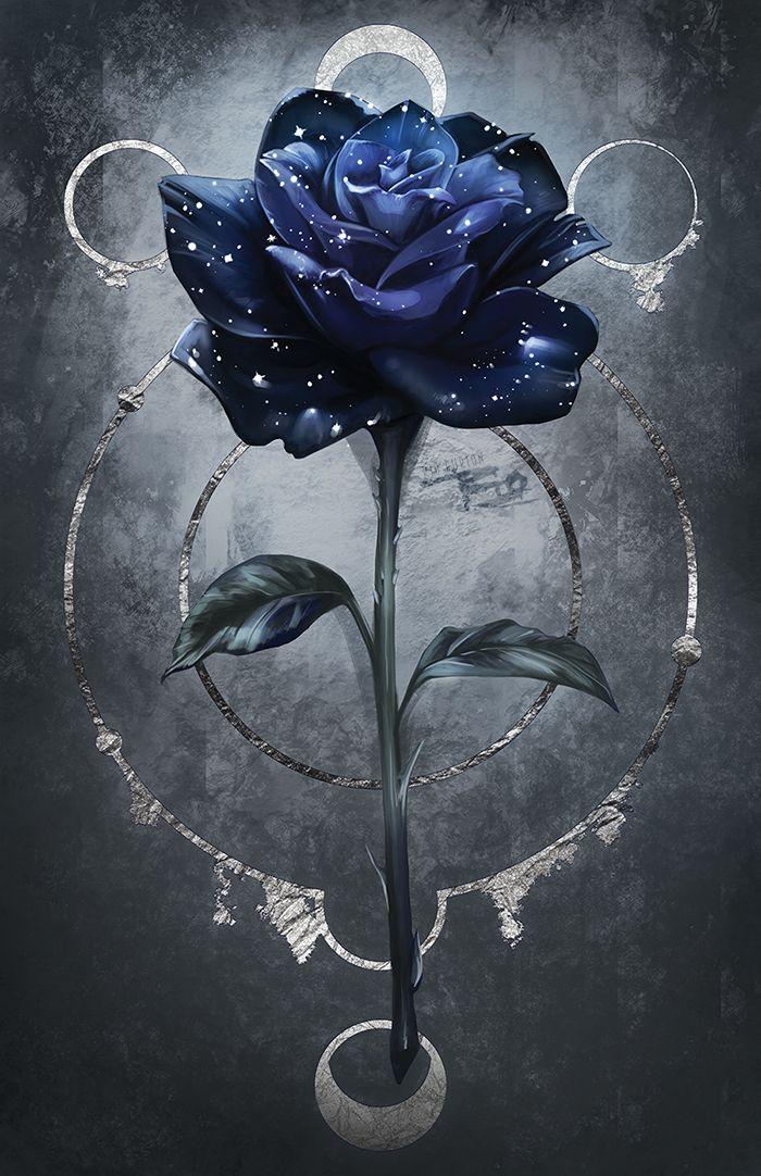 Moon and Rose in 2020 | Blue roses wallpaper, Rose art ...