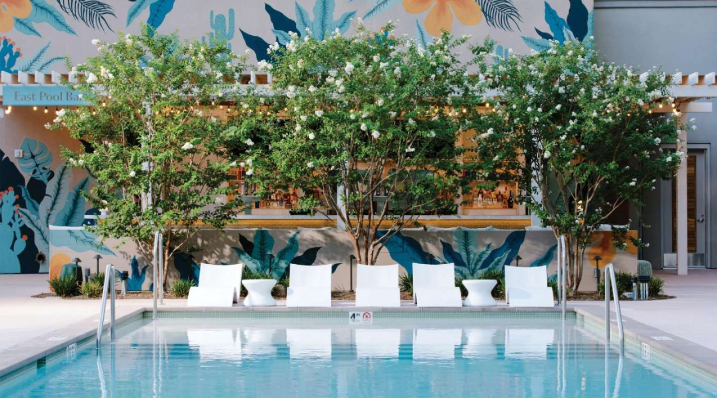 Pools Cabanas Park Mgm Pool Cabana Las Vegas Pool Pool