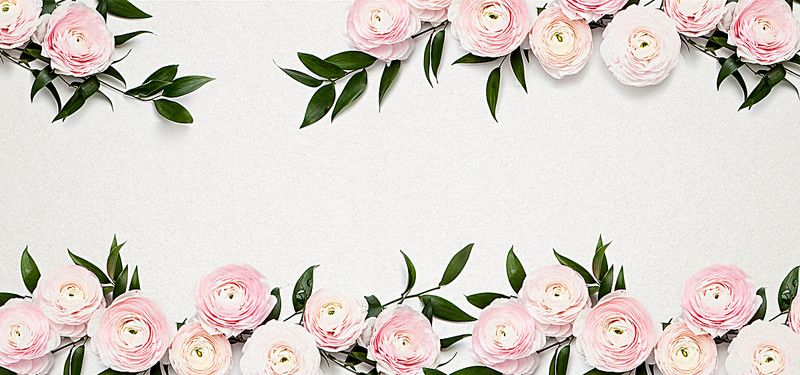 Romantic Flowers Background Flower Backgrounds Pink Roses