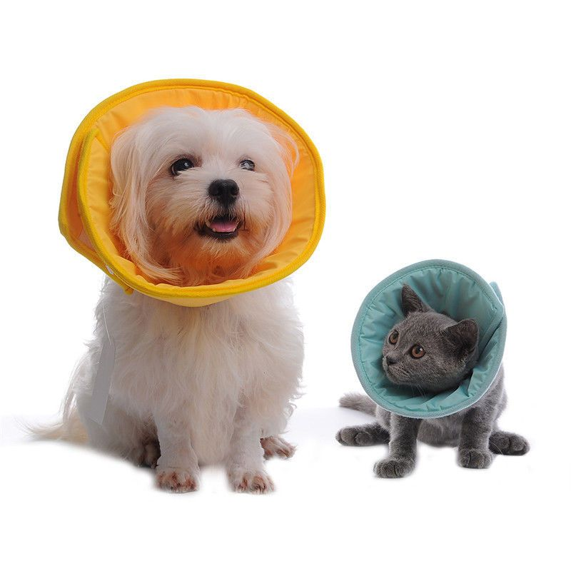 19 Aud Soft Pet Recovery Cone Collar Medical Protection Anti