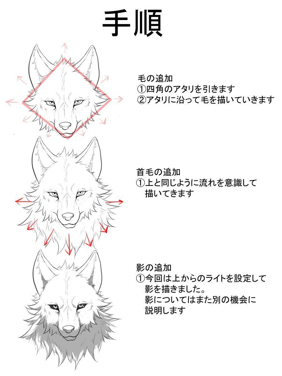 Zex On2020 狼 描き方動物のスケッチ狼イラスト