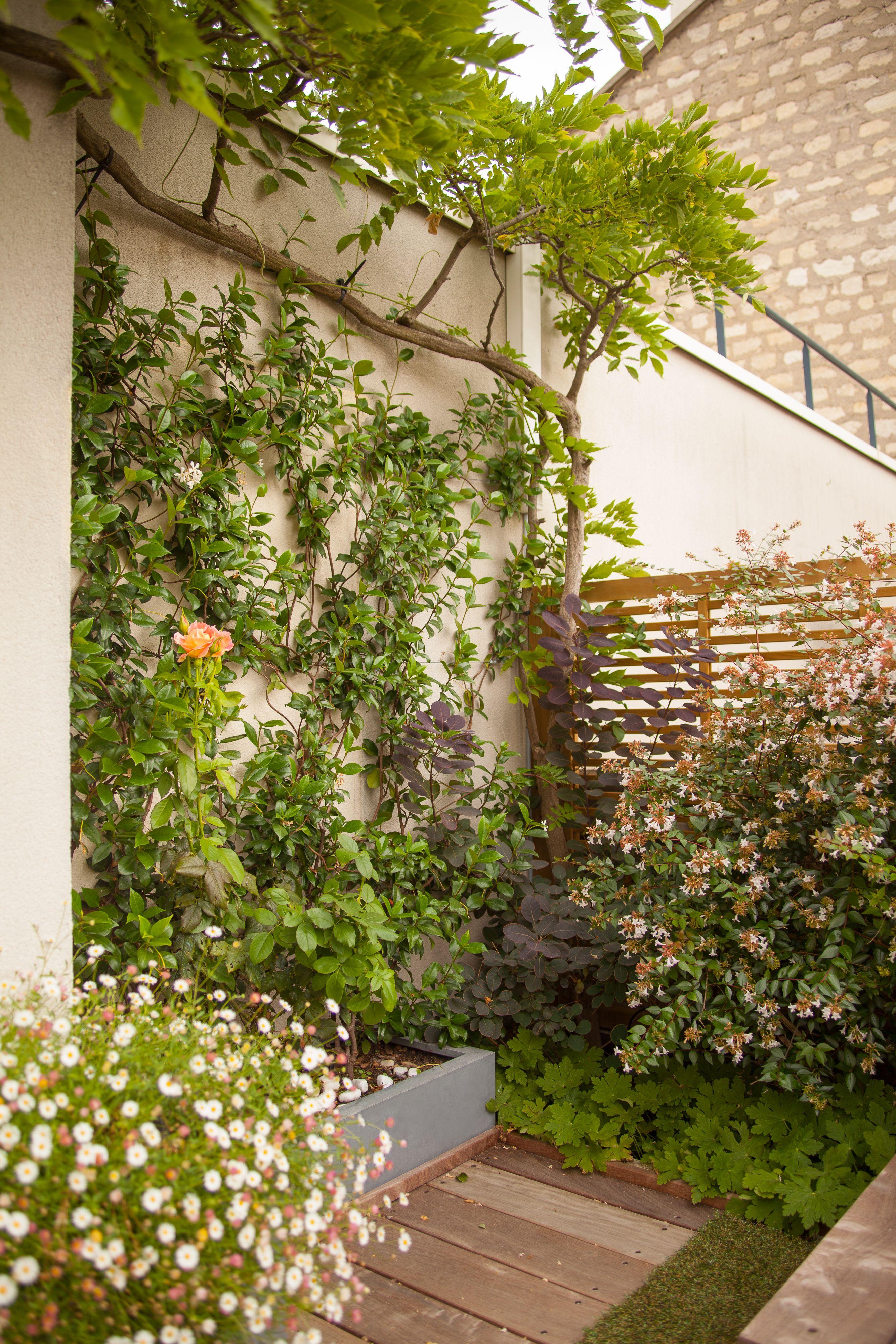coin de verdure sur terrasse à deux étages dans le 15e