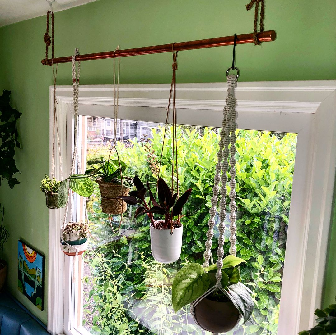 Small Homedecorating: New Bohemian Style Plant Rod I Made! Great Way To Hang