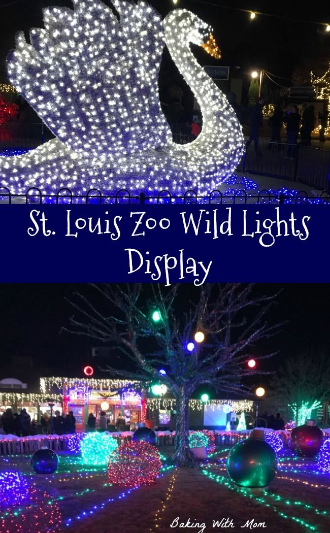St Louis Christmas Lights 2019 St. Louis Wild Lights Display Christmas lights at the St. Louis