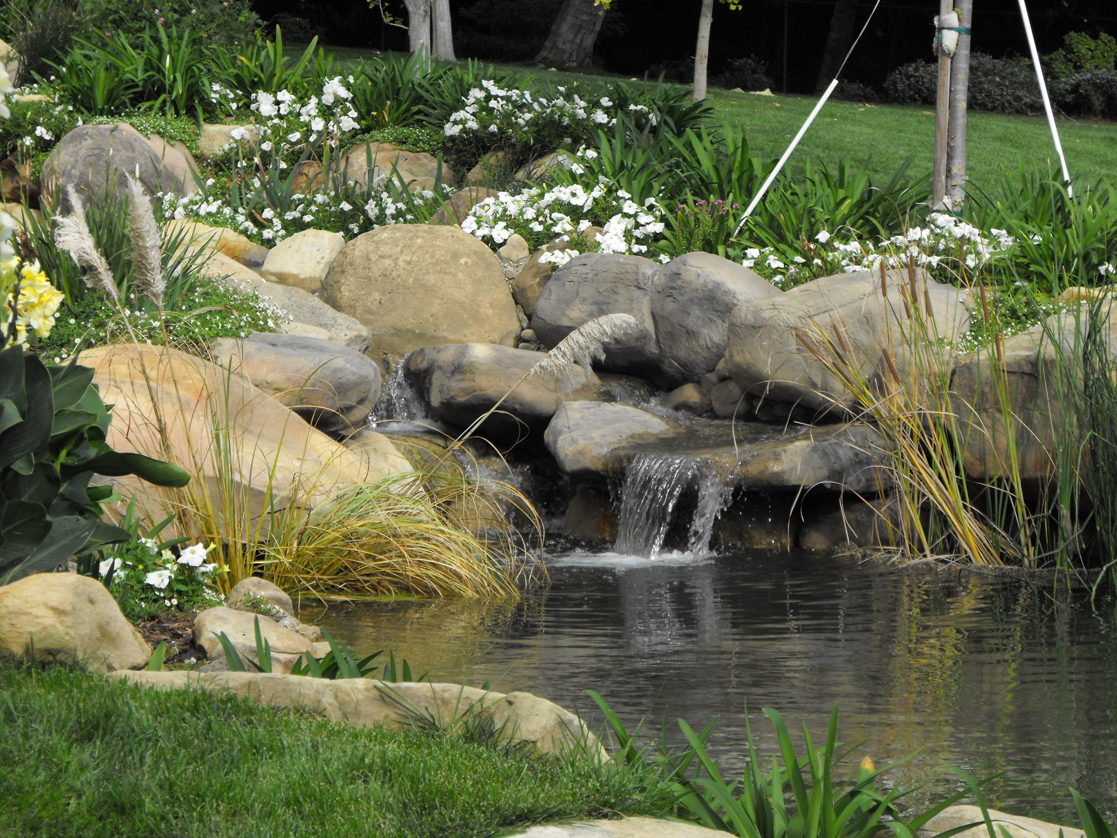 Waterfall Designs Koi Pond Design Pond Construction Ideas
