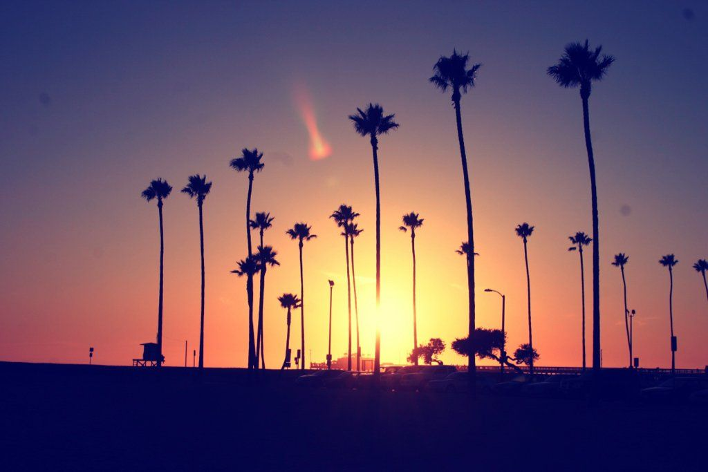 Photography Tumblr Hd Images 3 HD Wallpapers California LoveCalifornia Palm TreesSunset