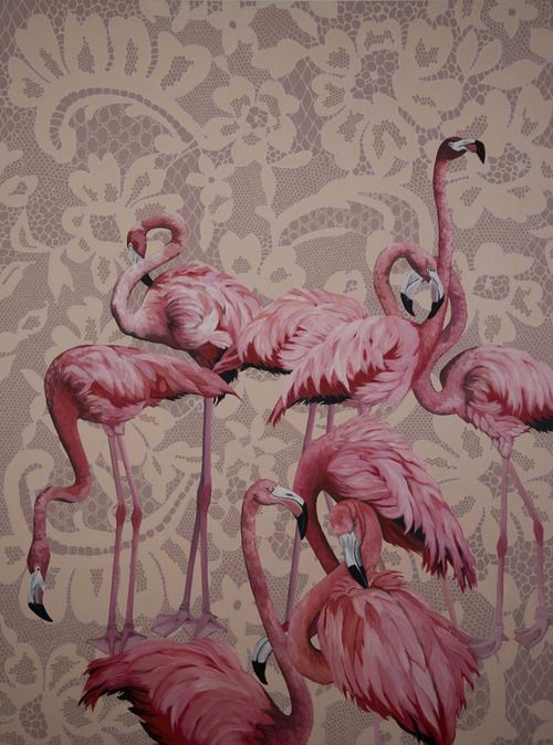 Guel and Pink Flamingos by Ana Elisa Egreja