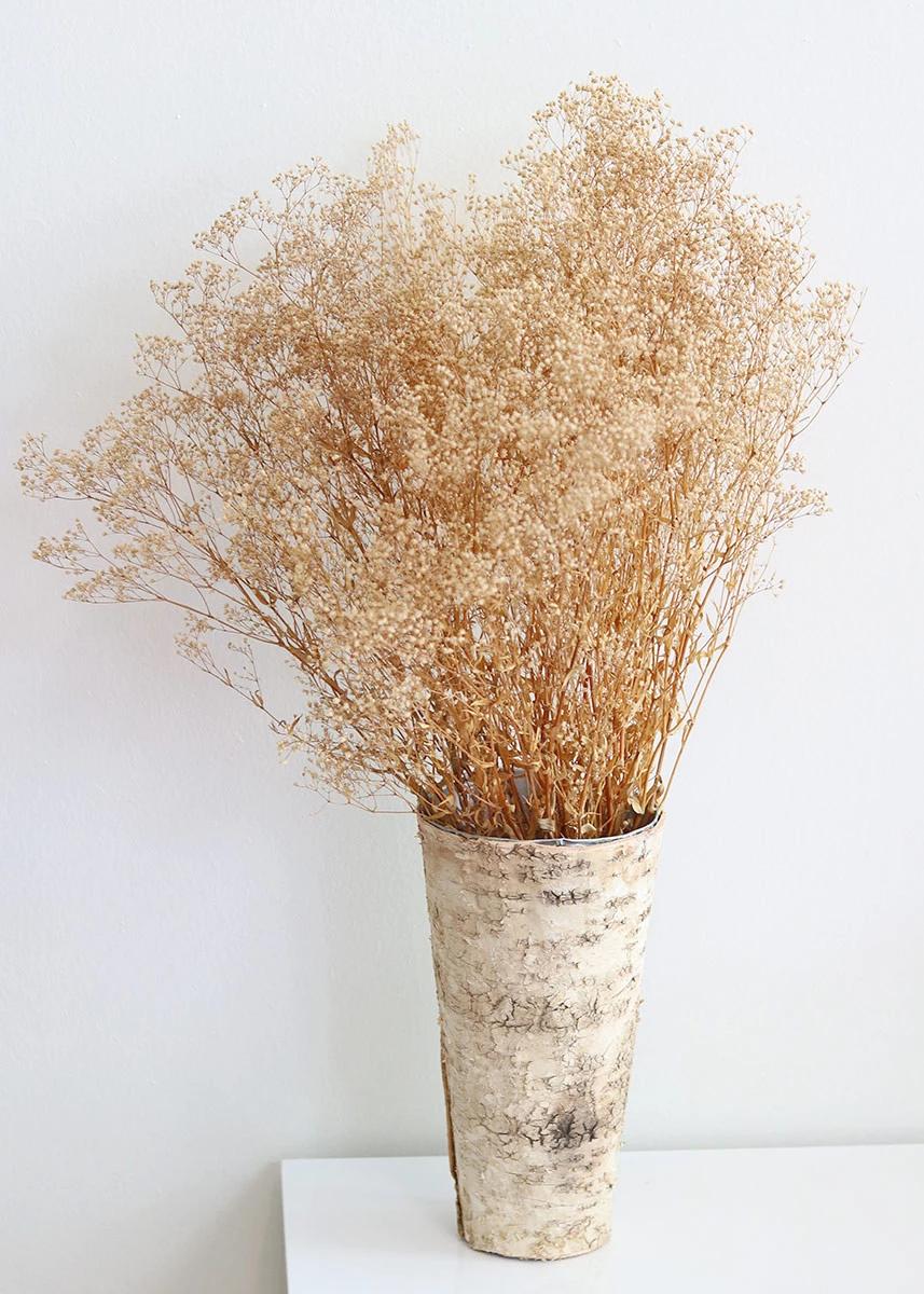 Preserved Natural Gypsophila 4 Oz Bundle How To Preserve Flowers Dried Flower Arrangements Dried Flowers
