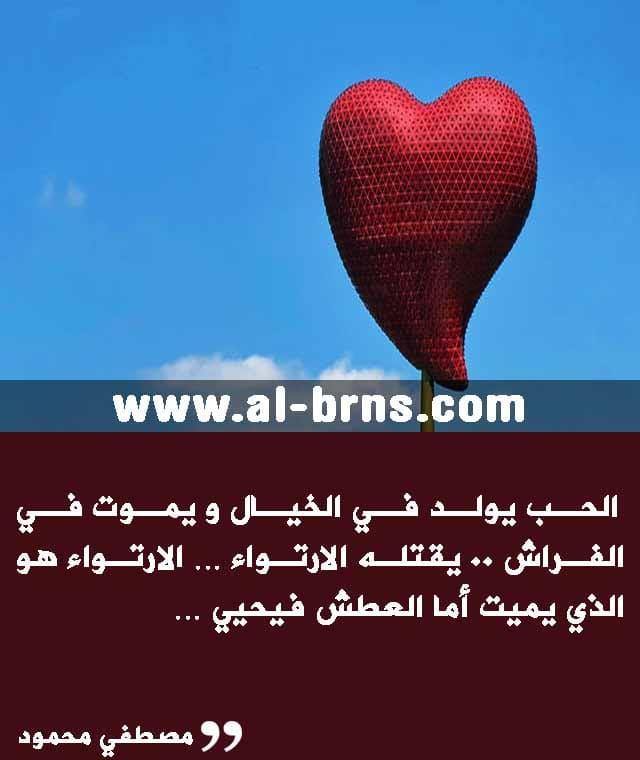 Pin On اقتباسات عن الحب